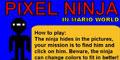 Picture Pixel Ninja